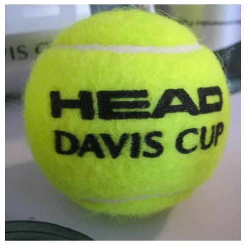HEAD DAVIS CUP TENNISBOLDE